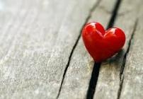artigo Amor