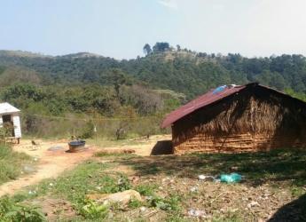 Galeria Voluntários visitam a Tribo Guarani no Pico do Jaraguá