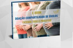 noticia E-book gratuito disponível na internet tira dúvidas de casais sobre doação compartilhada de óvulos