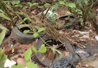 noticia Em Mairiporã vereador fiscaliza descarte irregular de lixos e entulhos em áreas de preservação ambiental
